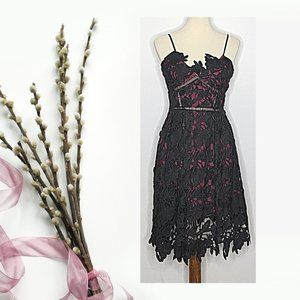 Romeo & Juliet Couture Dress Black Lace Small